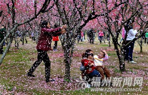 女为拍照摇树,称花总是要落的